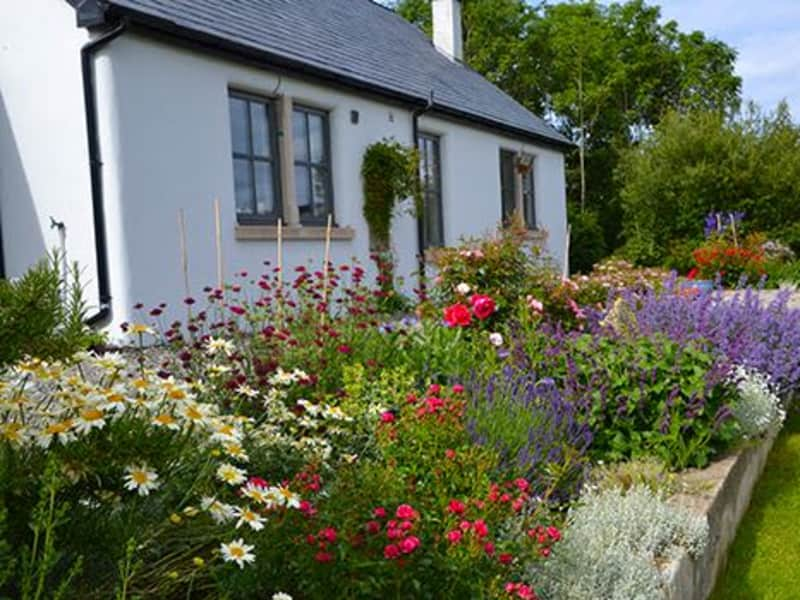 Housesitting assignment in Dunfanaghy, Ireland