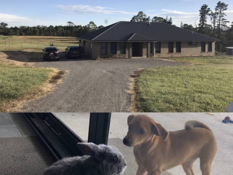 Housesitting assignment in Clarence Town, New South Wales, Australia