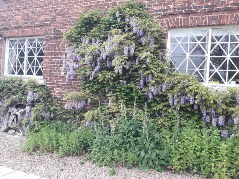 Housesitting assignment in Retford, United Kingdom