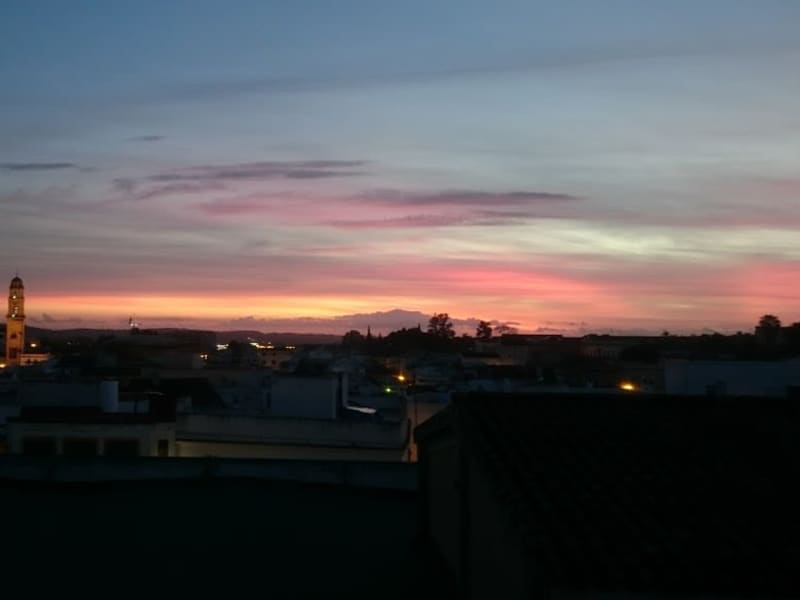 Housesitting assignment in Jerez de la Frontera, Spain