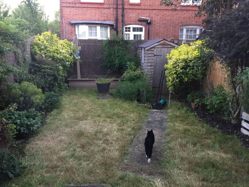 Housesitting assignment in Tottenham, United Kingdom