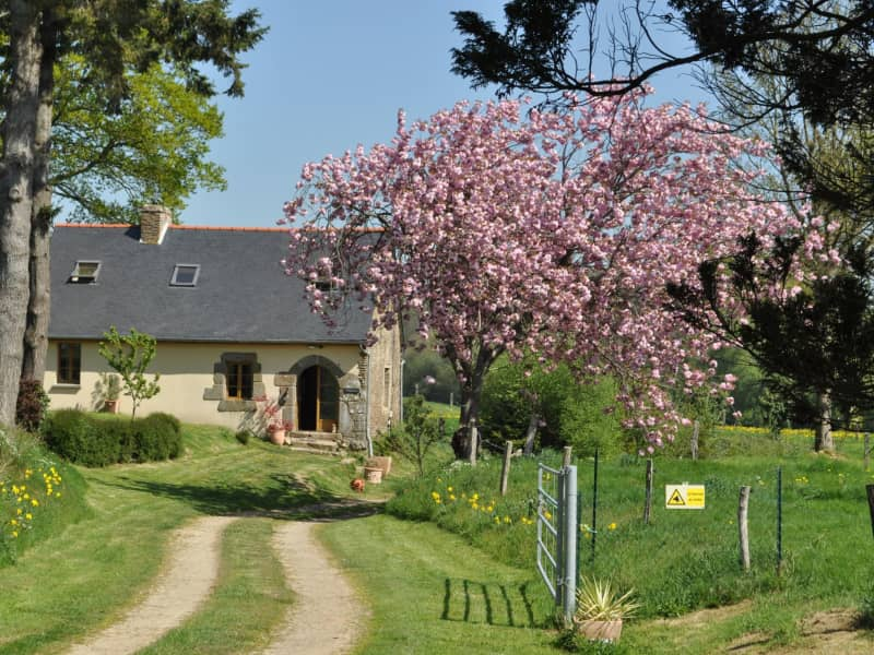 Housesitting assignment in Fougerolles-du-Plessis, France