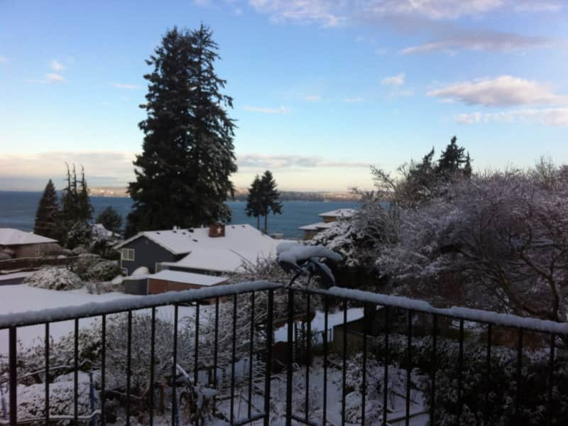 Housesitting assignment in Lynnwood, Washington, United States