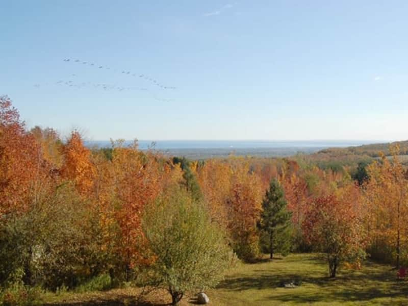 Housesitting assignment in Blue Mountains, Ontario, Canada