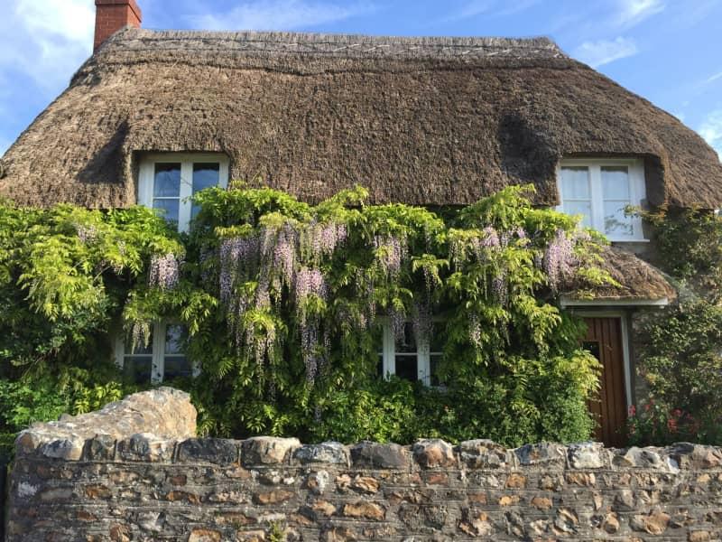 Housesitting assignment in Hemyock, United Kingdom
