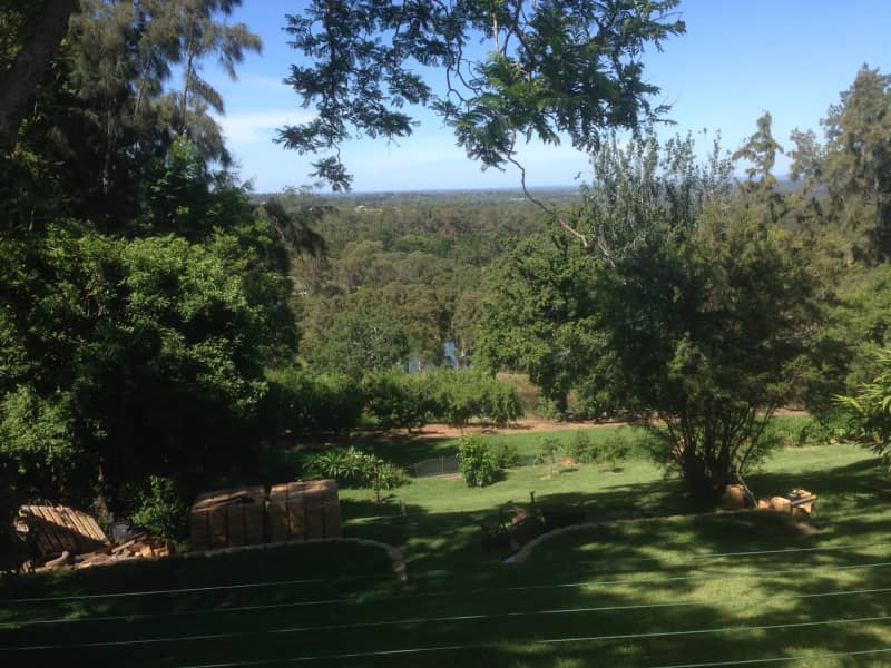 Housesitting assignment in Grose Vale, New South Wales, Australia