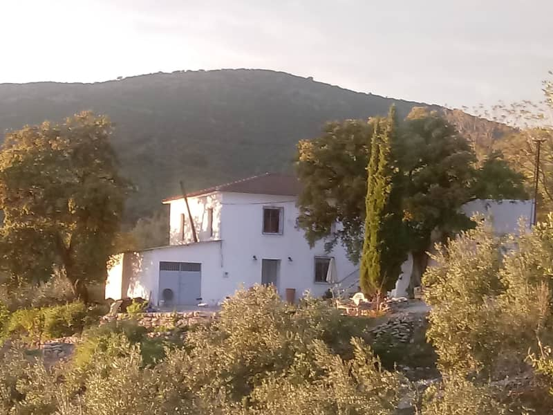Housesitting assignment in Algarinejo, Spain