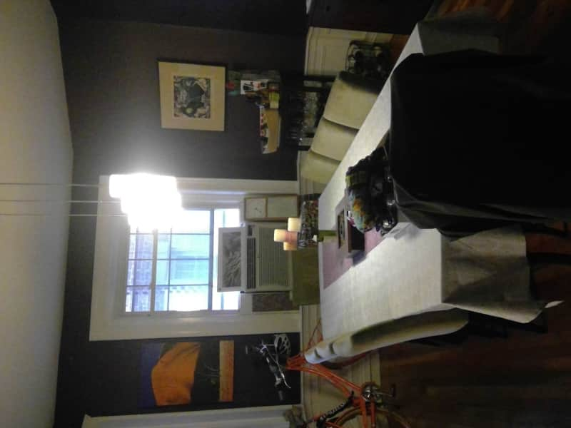 Housesitting assignment in Brookline, Massachusetts, United States