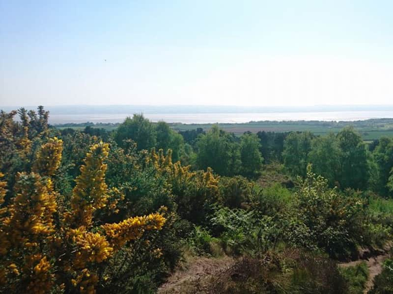 Housesitting assignment in Heswall, United Kingdom
