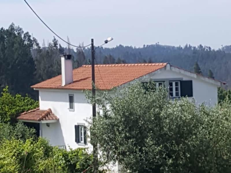 Housesitting assignment in Sernache do Bomjardim, Portugal