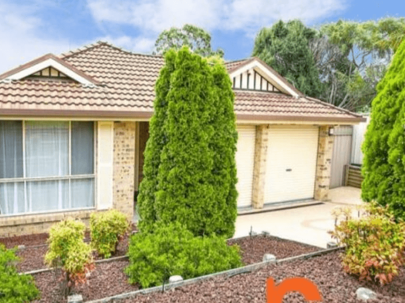 Housesitting assignment in Penrith, New South Wales, Australia