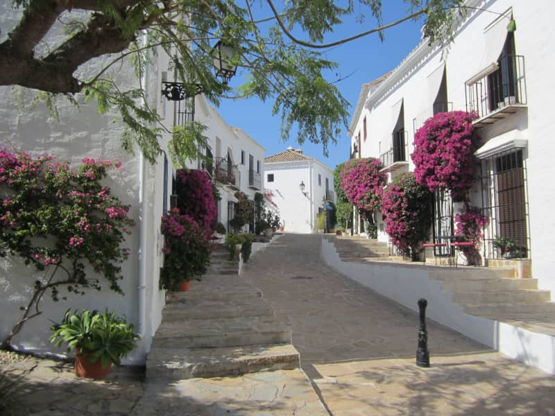 Housesitting assignment in Nueva Andalucia, Spain