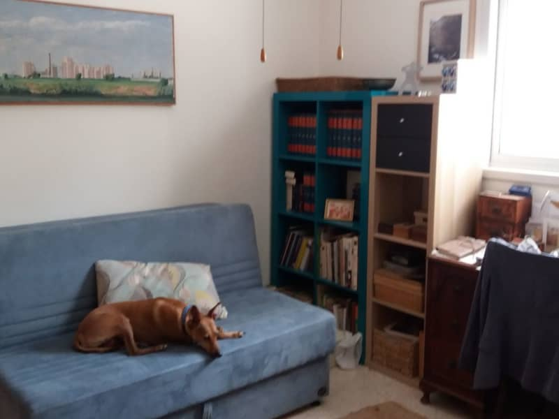 Housesitting assignment in Herzliyya, Israel