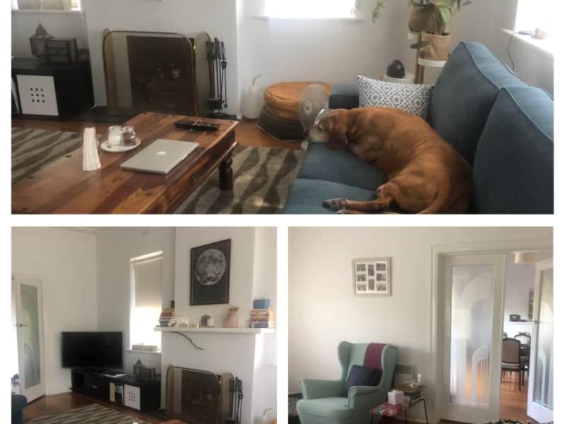 Housesitting assignment in St Kilda East, Victoria, Australia