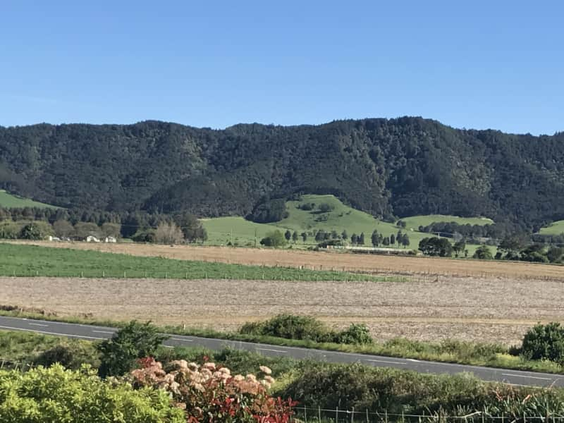 Housesitting assignment in Pokeno, New Zealand