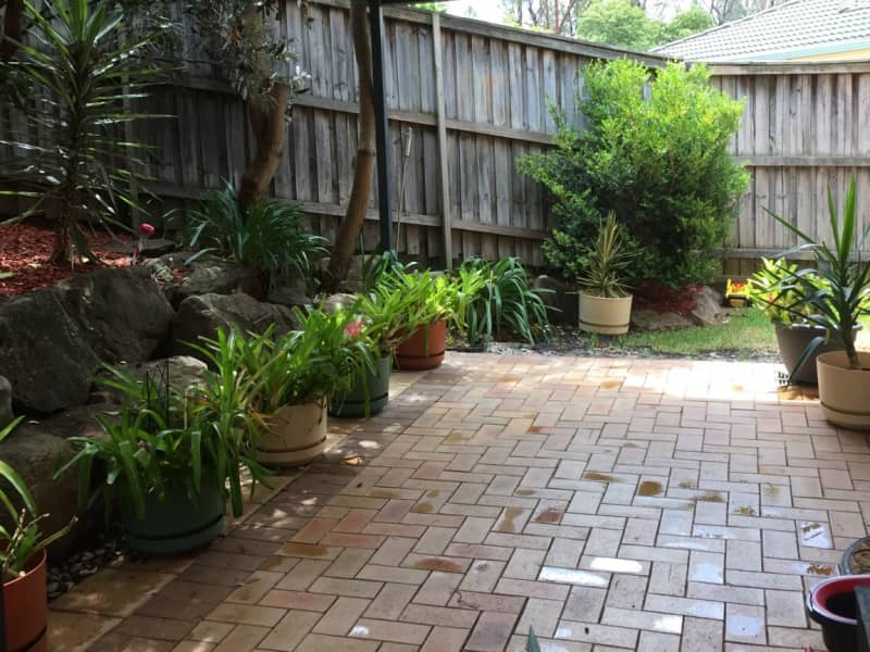 Housesitting assignment in Menai, New South Wales, Australia