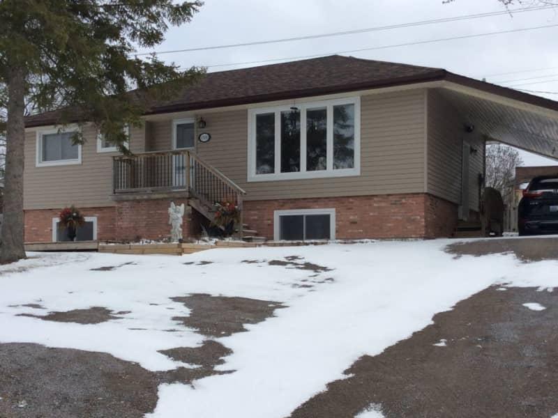 Housesitting assignment in Peterborough, Ontario, Canada