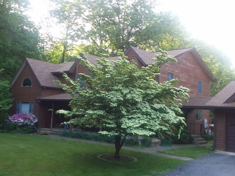 Housesitting assignment in Ellicott City, Maryland, United States