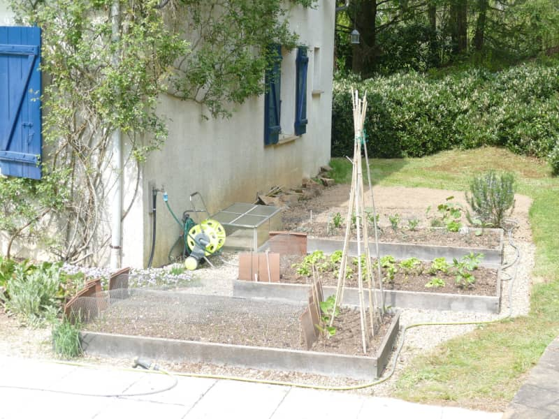 Housesitting assignment in Saint-Yrieix-la-Perche, France