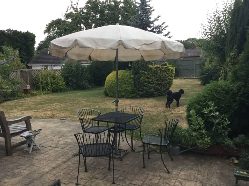 Housesitting assignment in Tickhill, United Kingdom