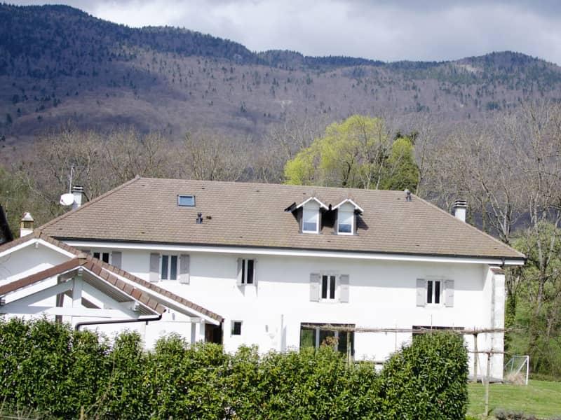 Housesitting assignment in Divonne-les-Bains, France