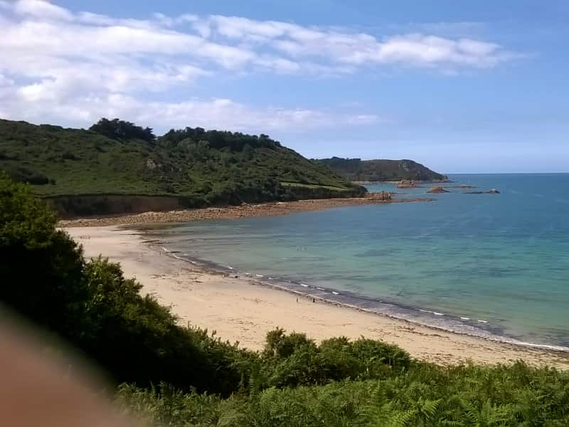 Housesitting assignment in Lannion, France