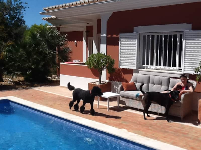 Housesitting assignment in São Brás de Alportel, Portugal