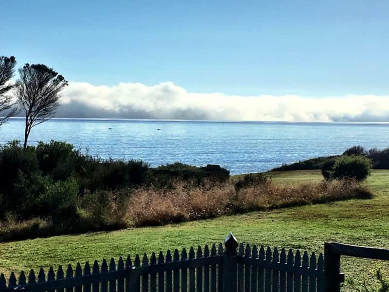 Housesitting assignment in Weymouth, Tasmania, Australia