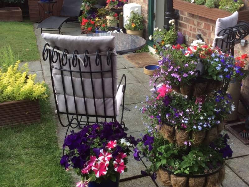 Housesitting assignment in Port Sunlight, United Kingdom