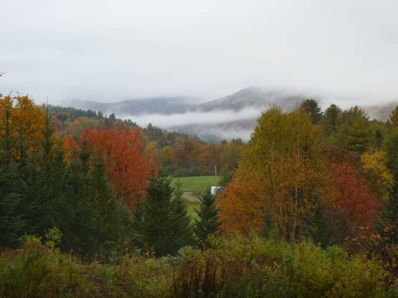 Housesitting assignment in Hardwick, Vermont, United States
