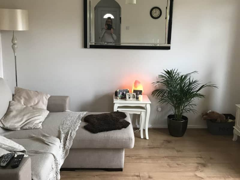 Housesitting assignment in Bourne End, United Kingdom