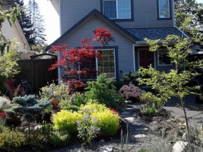 Housesitting assignment in Courtenay, British Columbia, Canada