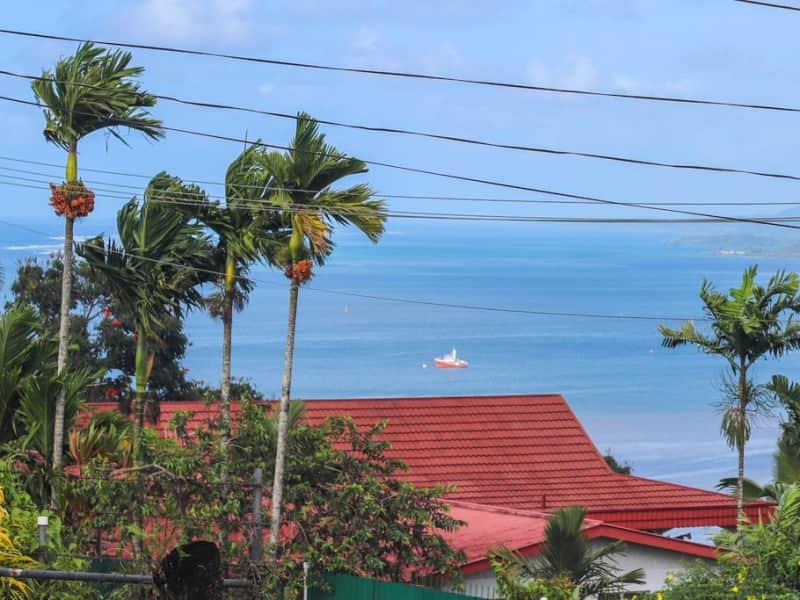 Housesitting assignment in Suva, Fiji