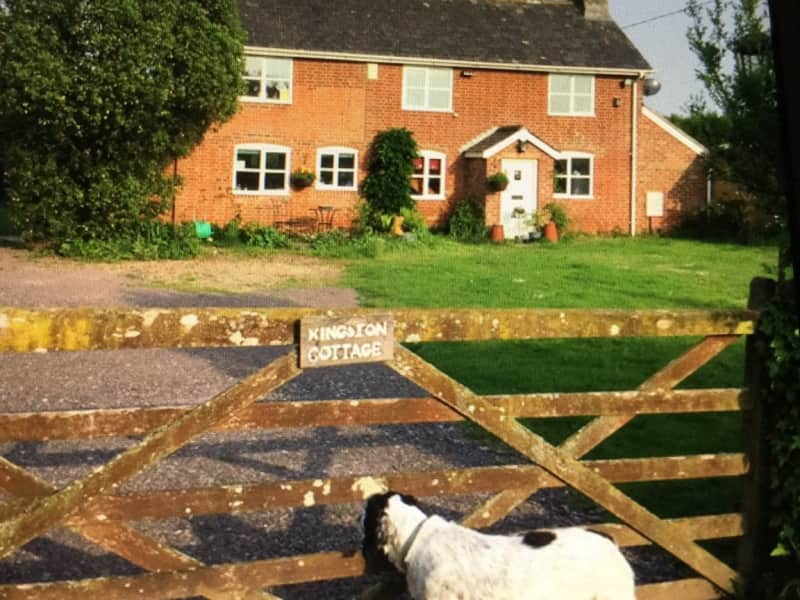 Housesitting assignment in Ringwood, United Kingdom