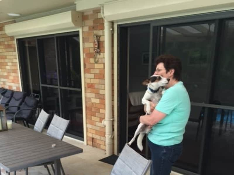 Housesitting assignment in Epping, New South Wales, Australia