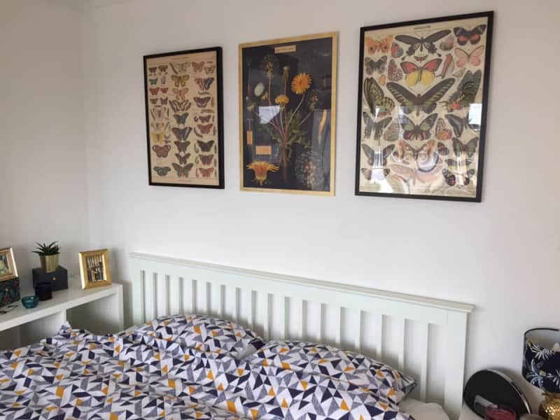 Housesitting assignment in Stopsley, United Kingdom
