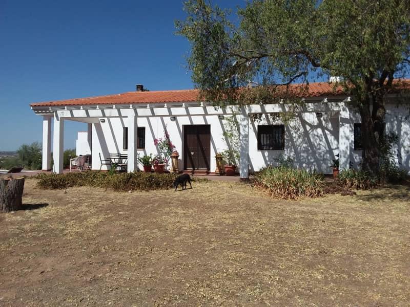 Housesitting assignment in Zafra, Spain