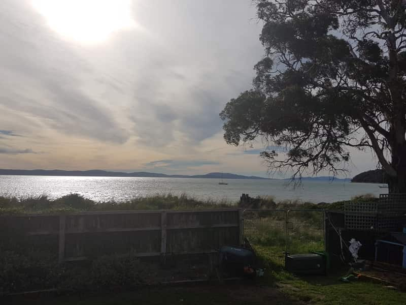 Housesitting assignment in Hobart, Tasmania, Australia