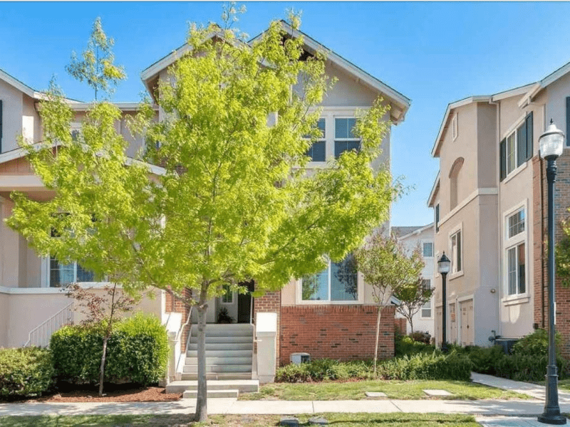 Housesitting assignment in Livermore, California, United States