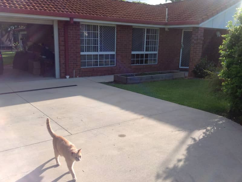 Housesitting assignment in Caboolture South, Queensland, Australia