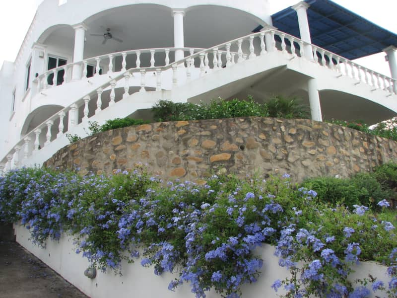 Housesitting assignment in Puerto Vallarta, Mexico