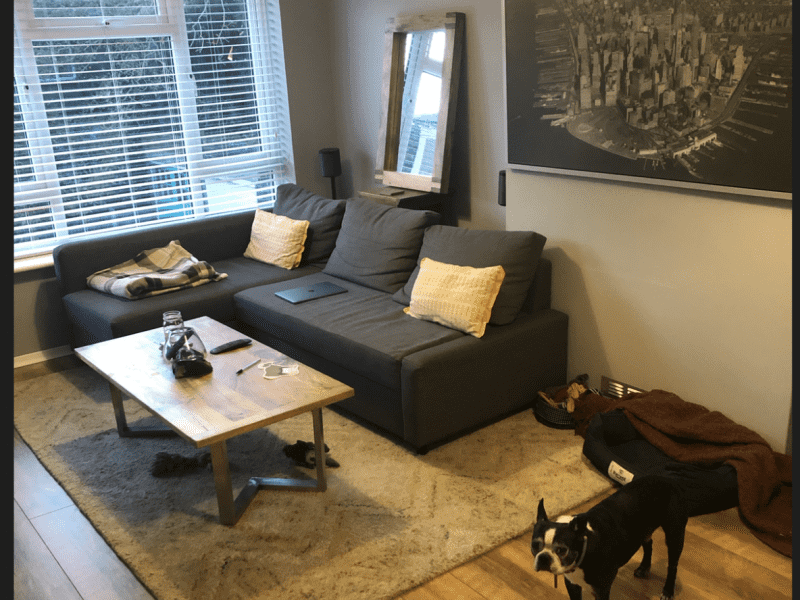 Housesitting assignment in Isleworth, United Kingdom