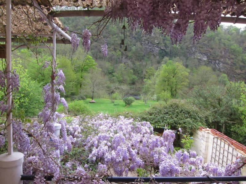 Housesitting assignment in Beaulieu-sur-Dordogne, France