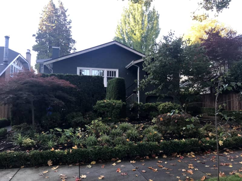 Housesitting assignment in Kitsilano, British Columbia, Canada