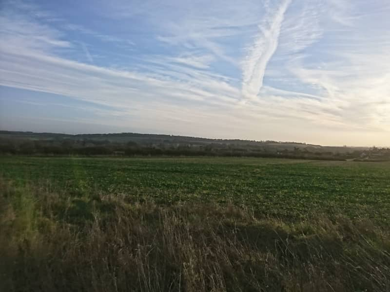 Housesitting assignment in Goodworth Clatford, United Kingdom