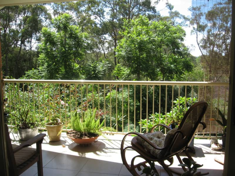 Housesitting assignment in Springwood, New South Wales, Australia