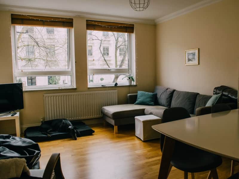 Housesitting assignment in Bayswater, United Kingdom