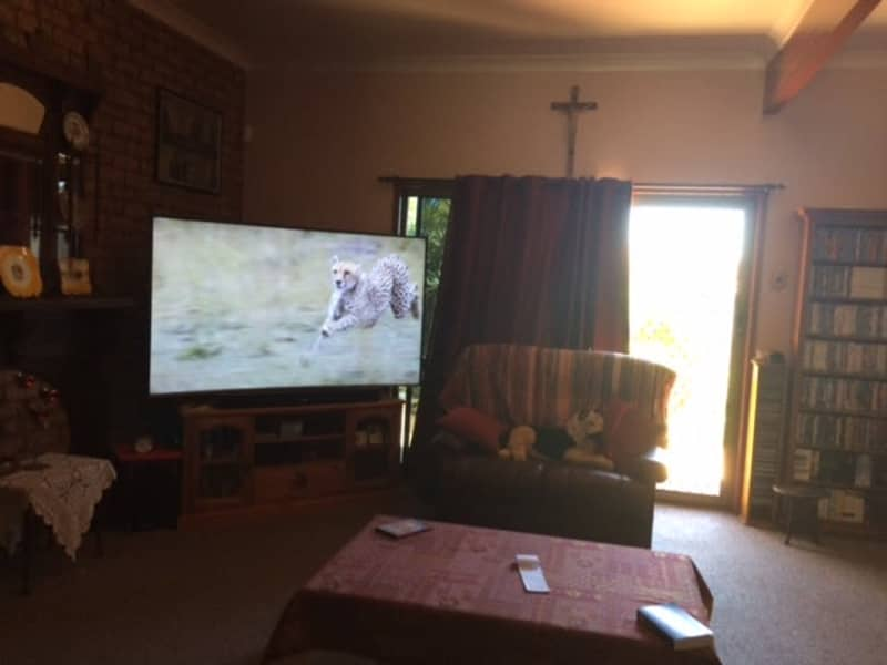Housesitting assignment in Darling Heights, Queensland, Australia