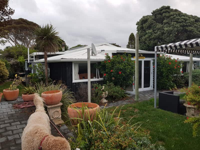 Housesitting assignment in Te Awanga, New Zealand