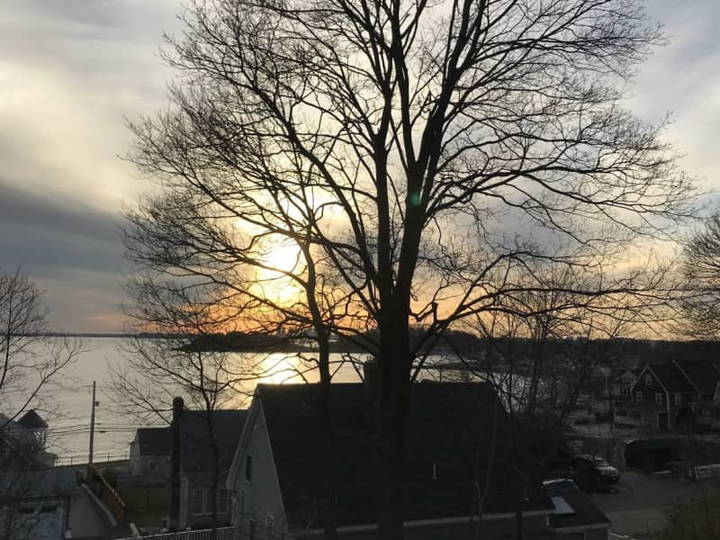 Housesitting assignment in Nahant, Massachusetts, United States